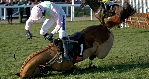 Annie Power has shown no ill effects of her Cheltenham fall and could run at both Aintree and Punchestown.