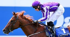Australia with Joseph O'Brien up