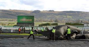 A file photo from Cheltenham race course.