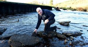 Cllr Derry Canty at the collapsed weir at Ballincollig. Inland Fisheries staff worked over the weekend to save fish trapped by its collapse.