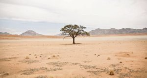 Desertification, drought and flooding are posing huge challenges for people in North Africa, with up to 250m people on the continent set to suffer from water and food insecurity in the 21st century.