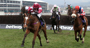 Don Poli, the RSA Chase winner was one of a number of French-bred horses that Willie Mullins was successful with at Cheltenham last week.