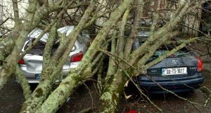 A fallen tree lies on top of two parked cars on Pope's Quay, Cork. Tony Lyons was only seconds away from sitting into his car. Picture: Larry Cummins