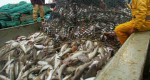 Ireland drops to third on excessive fishing shame list