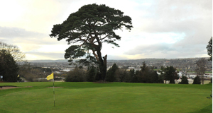 TOUGH TIMES: Frankfield Golf Club in Cork City has seen its membership fall from a peak of around 460 in 2007 to just 76 in 2014, forcing the owners to close the course but retain other facilities.Picture: Des Barry