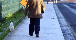 Truth or Not? Cork City Council to look at providing residents' associations with grit
