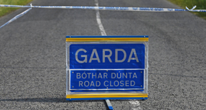 Two-year-old boy dies after traffic accident in Wicklow | BreakingNews.ie