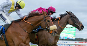 WHIP HAND: Bishops Road (right)  beats Heathfield in somewhat controversial circumstances at Leopardstown last Sunday.