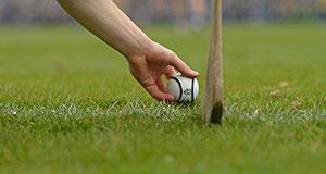 Warwickshire claim Allianz Hurling League Division 3A silverware at Trim GAA Club