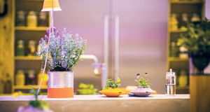 A painted tin and little felted spheres become holders for herbs and flowers in Mette's Farm Kitchen at 100% Design 2013.