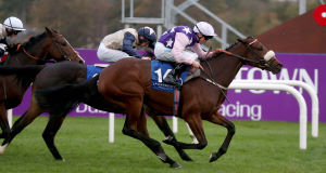 Katie T ridden by Chris Hayes comes home to win at Leopardstown on Saturday. Picture: INPHO/Donall Farmer
