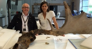 Dorothy Cross with Nigel Monaghan, keeper of the Natural History division at the National Museum of Ireland.