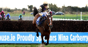 TOP HUNTER: Prince de Beauchene, impressive when winning at Thurles, will be even better suited to Leopardstown.