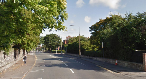 Man (47) dies after being struck by a auto in Dublin