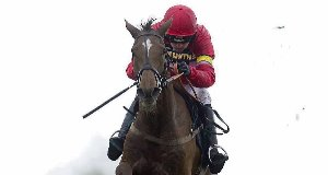 Silviniaco Conti: The King George winner will be running in the Gold Cup for the third time.