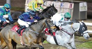 Togoville and Gary Carroll winning their 4th race at Dundalk from Straits Of Zanzibar last night.