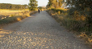 The Way of St James on the Camino Way.