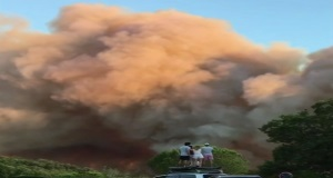 Firefighters and police injured tackling French wildfires