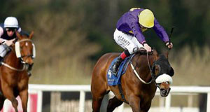 Zafayan won nicely at Leopardstown and connections are hopeful of a big run in the Chester Cup.